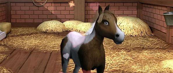Little Baby Horse - Play this highly addictive game and raise many beautiful horses.