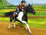 My Western Horse: Taking a Ride