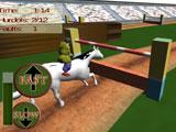 Horse Jump Show Obstacle
