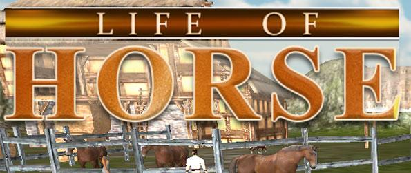 Life of Horse - Wild Simulator - Experience life as a wild horse in this rather unique horse simulation game, Life of Horse - Wild Simulator!