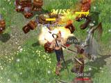 Eudemons Online Combat