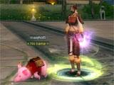Adorable pig pet in Silkroad-R