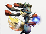 Pokemon Pets intense battle