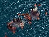Anno Online: Sea battles