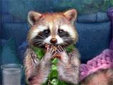 The Unseen Fears: Outlive Collector's Edition Raccoon