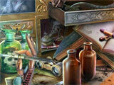 Mystery Case Files: Moths to a Flame hidden object scene