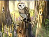 Gameplay for Awakening: Moonfell Wood