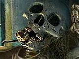 Creepy Skeleton in Redemption Cemetery: Children's Plight
