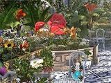 Princess Isabella - A Witch's Curse Garden