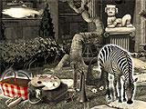 Age of Oracles: Tara's Journey Graphic Match Hidden Object Scene