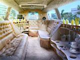 Secret Investigations Limousine