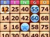 AvaTingo Bingo - Fantastic!
