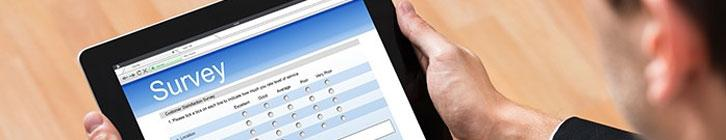 Surveys in Online Marketing preview image