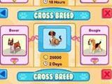 Pet Shop Story: Cross Breeding your Favorite Pets