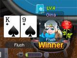 Poker USA Winning Hand