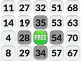 Bingo Madness gameplay