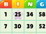 Bingo Bay Star