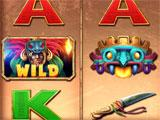 Billionaire Casino Wild Symbol