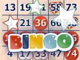 Bible Bingo Bingo