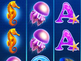 Dolphin Fortune Seahorse and Jellyfish