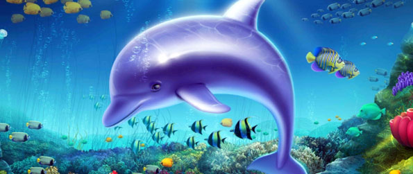 Dolphin Fortune - Play more, and get access to higher stakes and prizes.