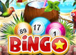 Bingo Tropical Haven game