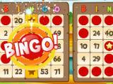 Bingo Abradoodle Win Bingo