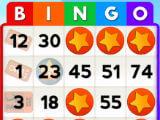 Filling a Bingo Card in My Bingo Card