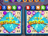 Getting a Double Bingo in Free Bingo World