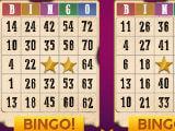 Bingo: Offline Free Bingo Games - Western Theme
