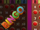 Getting a BINGO in Bingo: Offline Free Bingo Games