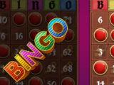 Getting a BINGO in Bingo: Offline Free Bingo Games