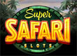 Safari Slots game
