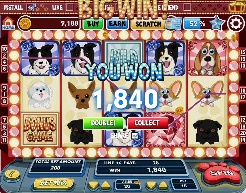 Dogs and cats slots iowa casinos near omaha