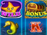 The Ocean Slot in Slots Paradise