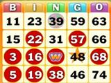 Bingo Game on Wingo Bingo!