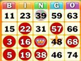 Bingo Game on Wingo Bingo!