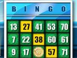 Wheel of Fortune Bingo 1 Card Game