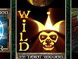 Slots Quest: The Museum Escape Wild Card