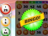 Call Bingo 4 Card Game
