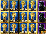 Wild Card Craze Win in Vegas Jackpot Slots