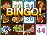 Let's Go Bingo Texas 4 card game