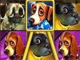 Big Win in Puppy Love Slots