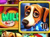 Puppy Love Slots Wild Win