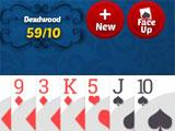 Playing Rummy in Gin Rummy Multiplayer