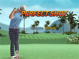 Shot Online Golf: World Championship: Game Play