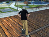Skateboard Party 3: Skateboarding