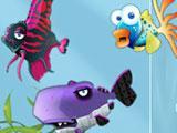 Free Aqua Zoo Fish Variety