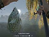 Fishing Planet Reeled in Catch