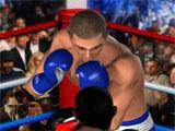 Ultimate Boxing Match